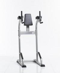 Vertical Knee Raise/Dip Stand CVR-341